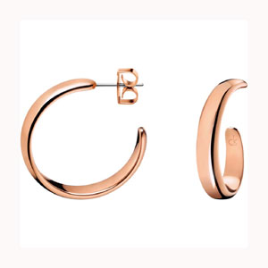 Calvin Klein Embrace earrings